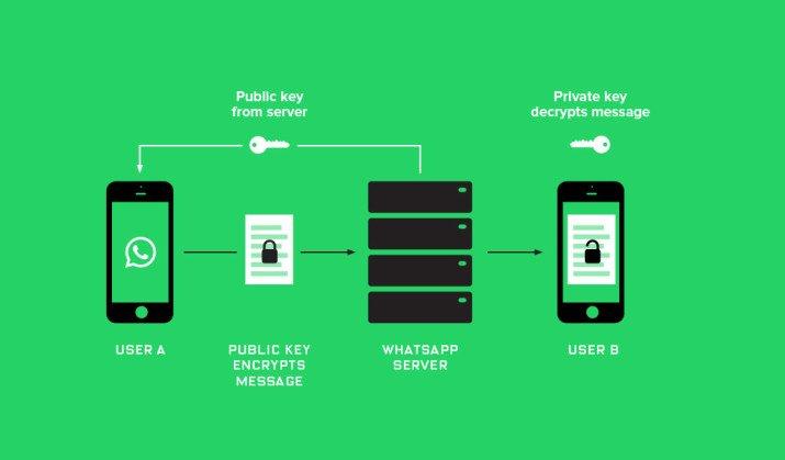 Whatsapp_Encryption-715x419